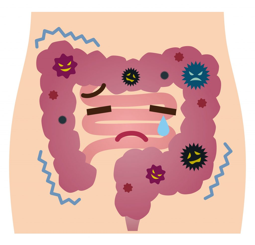 ヒーロー菌が減少すると腸内フローラの平和が乱れます。