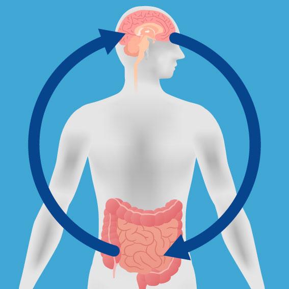 腸内フローラは第2の脳とも言われています
